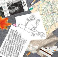 8 recherches pigeons E. De Jaham.jpg