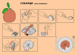 DN1-COM-Orange