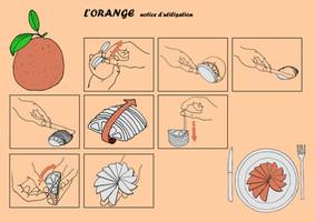 DN1-COM-orange-MaxenceP.jpg