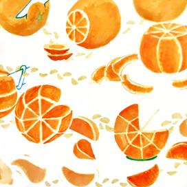 DN1-COM-orange-A2.jpeg