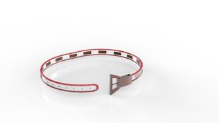 Projet ceinture Laetitia Bourgois