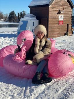 Flamingo action