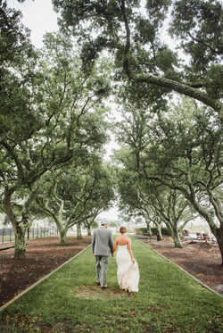 Southport Marina Wedding in Southport, NC Couple walks together between live oaks Photo by Sarah Sek