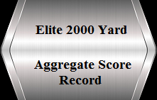 ScAgg-Record.png
