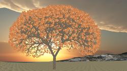 Optimized Tree mesh