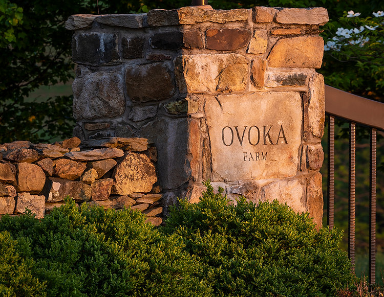Ovoka Farm Entrance Rock Sign.jpg