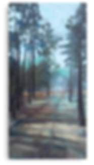 tree-fog-metal-Print.png