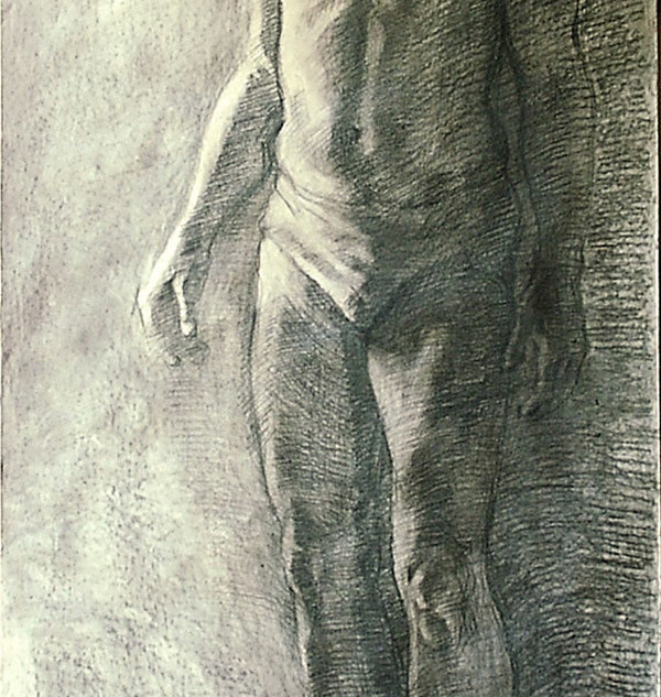 charcoal on paper 195x70