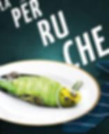 la-perruche-sans-texte-avec-titre-auteur