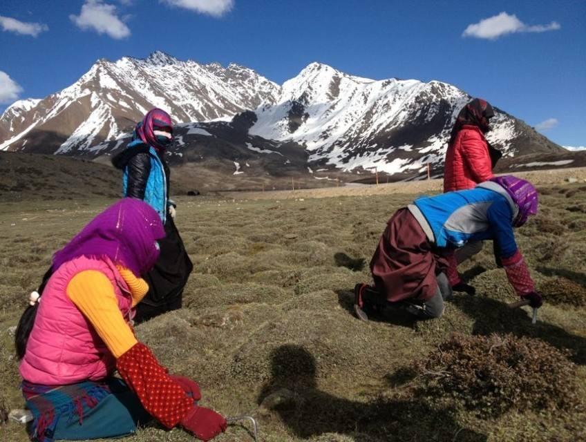 Stress Buster Tour Tibet