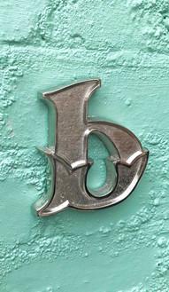 polished nickel b on green wall.jpg