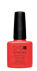 Shellac - French & Drench
