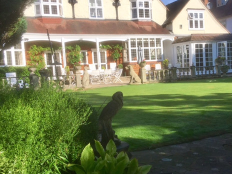 lawn care and weed control