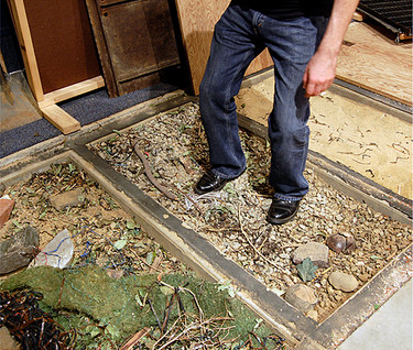 Foley Foot trays