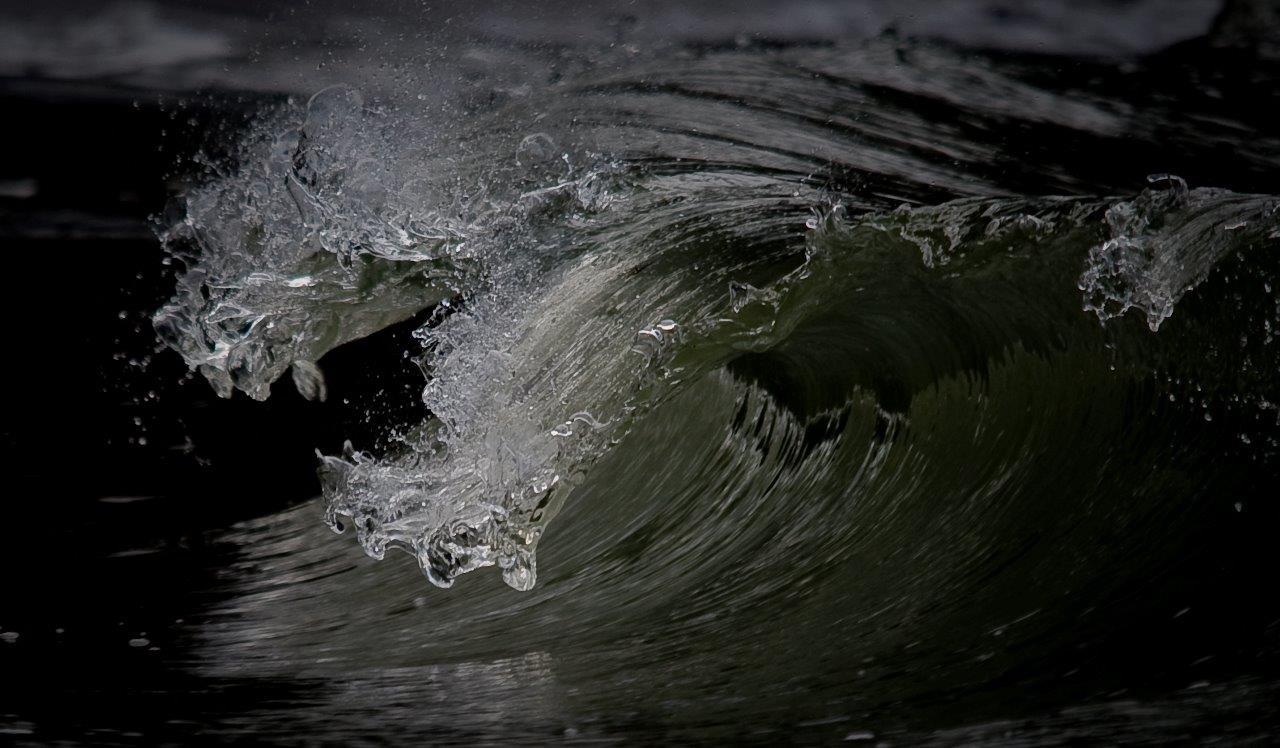 Ocean Tendrils