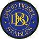 David Beisel Logo.jpg
