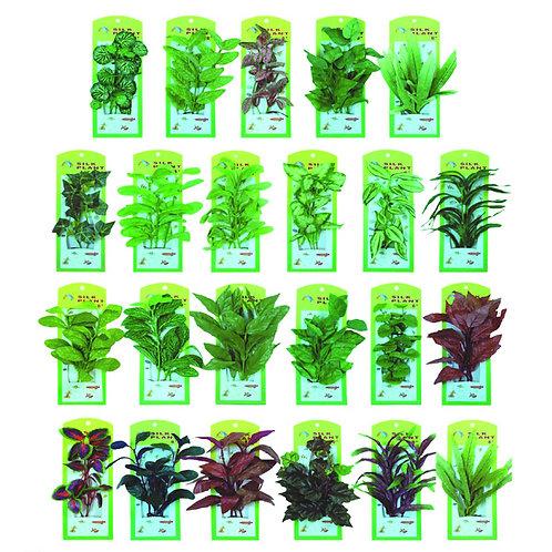 Silikonsko bilje