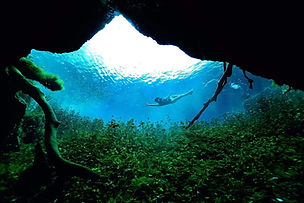 Scuba diving Tulum, in cenote car wash,with our Get Wet dive guides