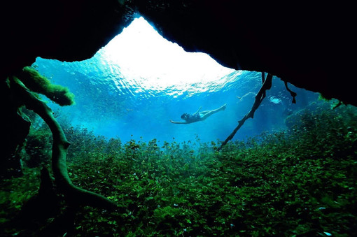 Woman freediver explores the depth of cenote Carwash near Tulum