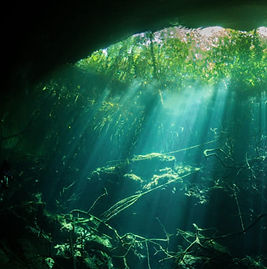 Curtains of light rays mak diving cenote Garden ofEden a unique experience