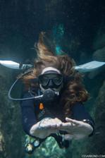 Scuba diving in Tulum with Get wet dive shop