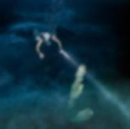 Arco iris cenote diving.jpg