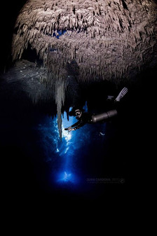 Scuba diver admires the formation on the ceiling of The Pit cenote between Playa del Carmen and Tulum