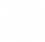 cap_icon-without-background-WHITE.png