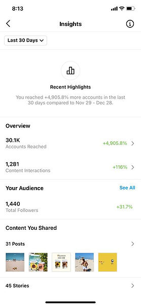 Nutrisya-instagram-insights-elite-creati