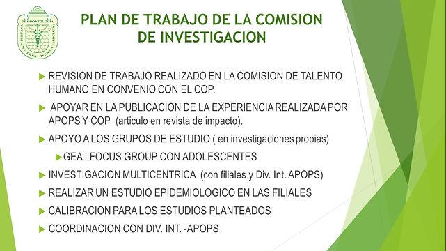 Plan de trabajo de la comision de invest