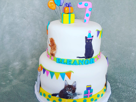 Colourful cat Birthday cake
