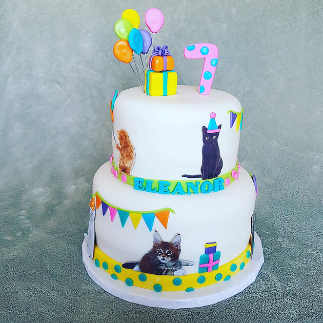 Colourful Cat Birthday Cake