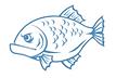 Рыбка31.png