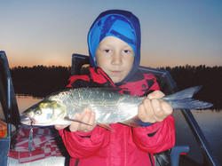 Жерех и юный рыболов. На Крылатку 5г