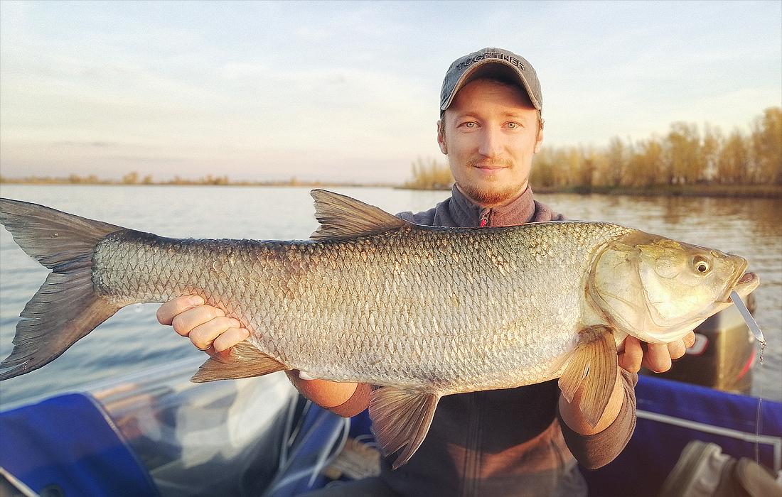 Блесна Торпедка, жерех 5.9 кг,Ишутин