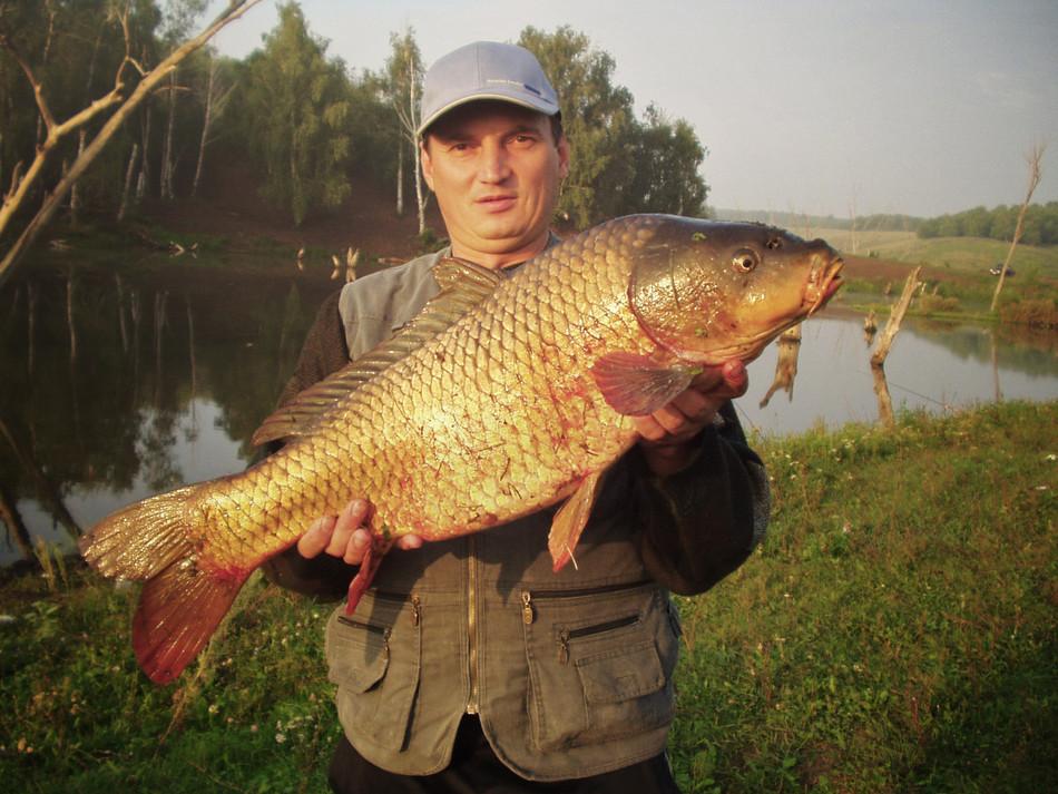«Ловля карпа на платнике и не только…», (Рыбалка на Руси, 10/2009)