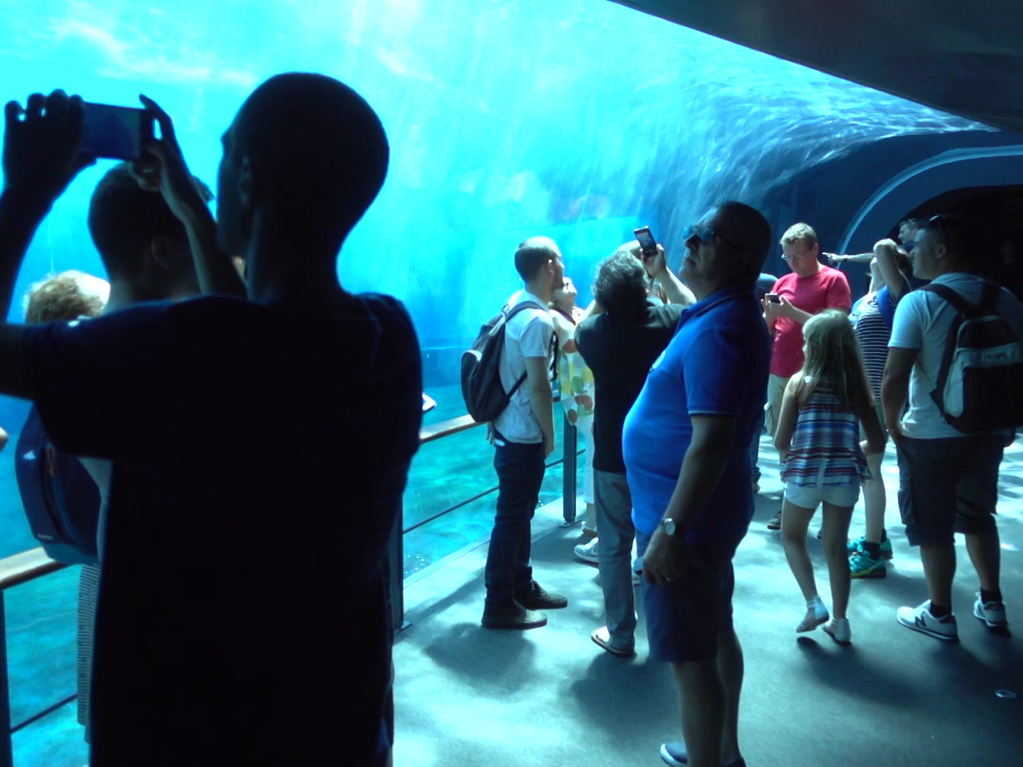 Visitor Attractions
