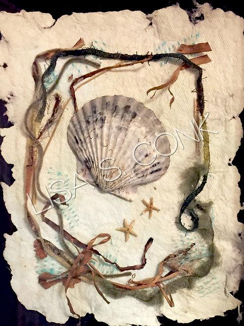 Handmade Paper & Shell