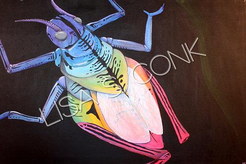Iridescent Grasshopper