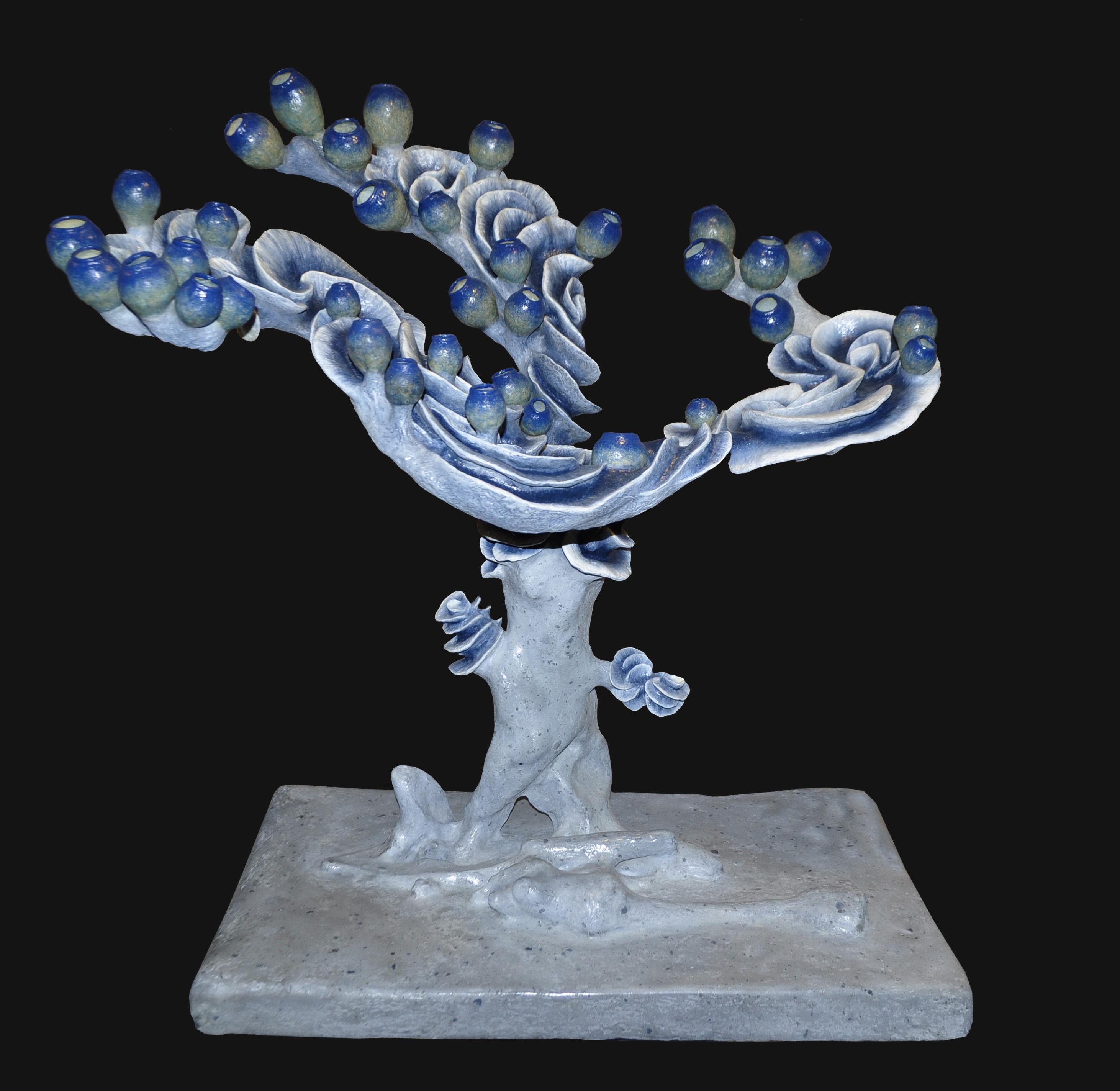 Renaissance du Corail. Éteinte