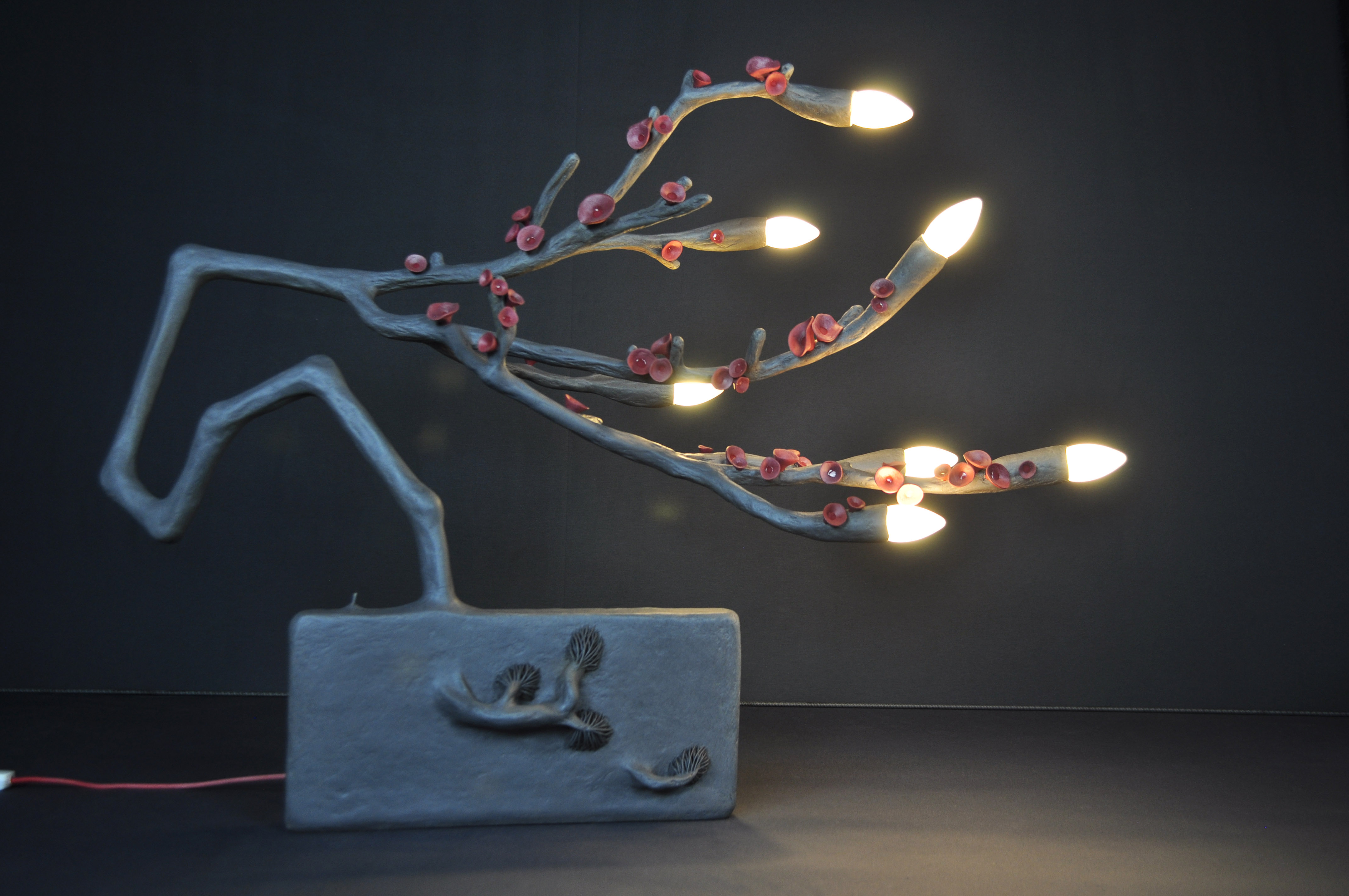 Un soir, un cerisier
