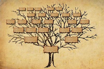 cultureasy-les-bienfaits-de-la-genealogie.jpg