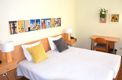 Twin room with terrace 1