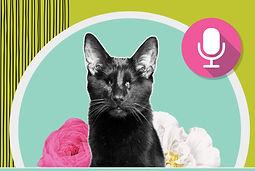 GwenCooper-Podcast-Social2%20(2)_edited.