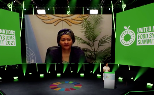 United Nations Food Systems Summit: creating momentum to tackle the health and climate emergency