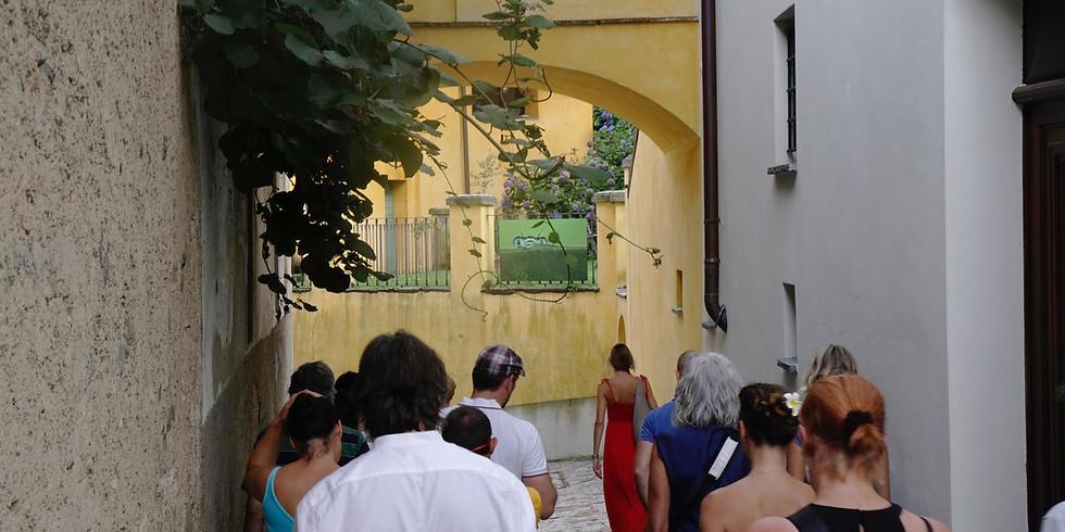 Visita guidata di CaronaImmagina - 20.7.19