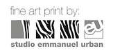 EU logo fine art print.png