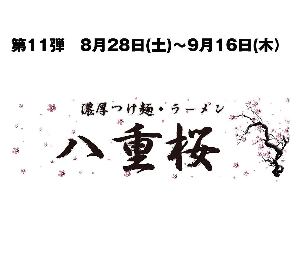 ⑪八重桜 告知①.jpg