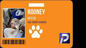 interns (1).png