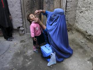 Gunmen kill four polio workers in Afghanistan